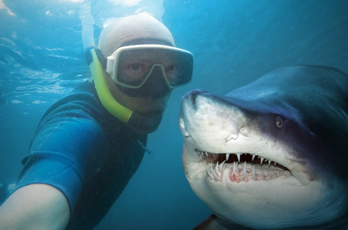 Sharks, selfies and selling: how to keep your focus in the right place